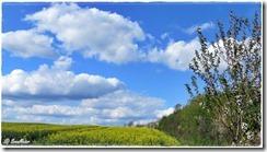 Wolken-180503-020
